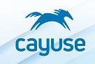 CayuseLogo