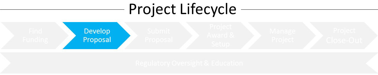 Lifecycle_DP