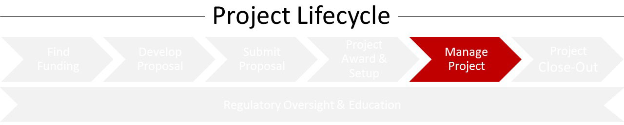 Lifecycle_MP