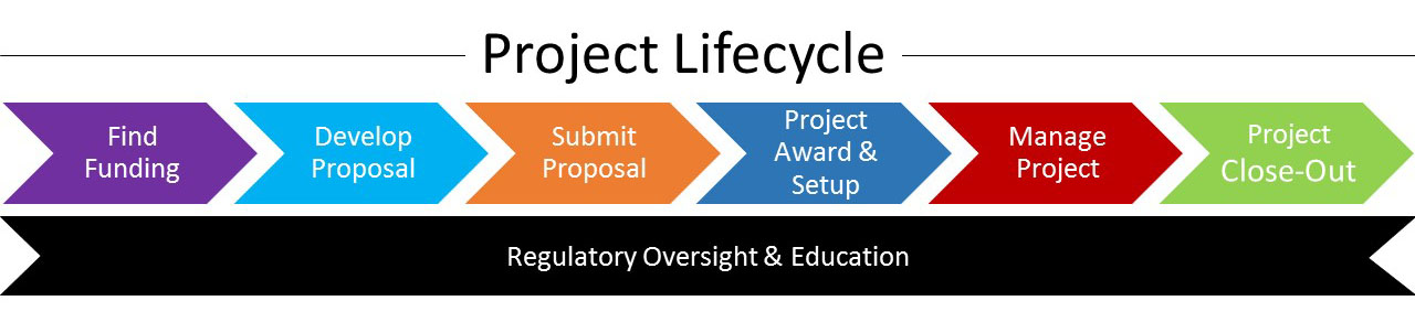 new project lifecycle